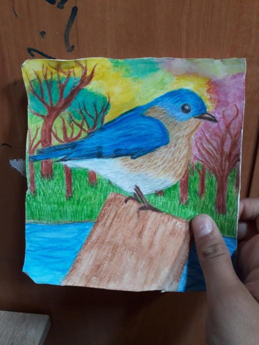 Just a bird I drew its okay I guess
