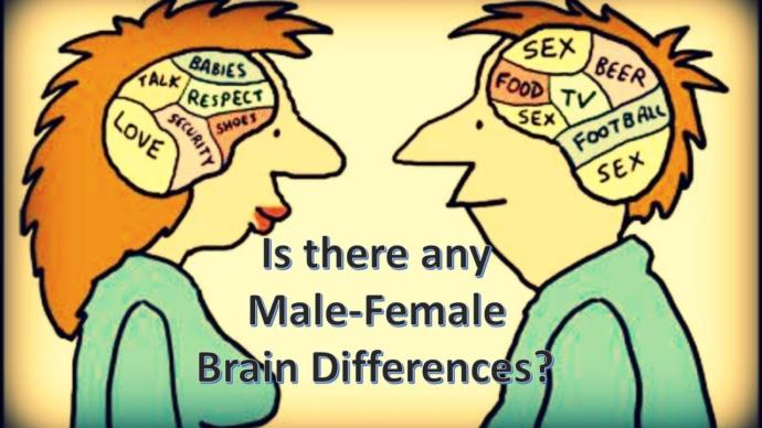 YES THERE IS! MANY DIFFERENCES!