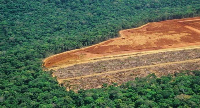 The Amazon Rainforest should be completely deforested for the benefit of the capitalists!