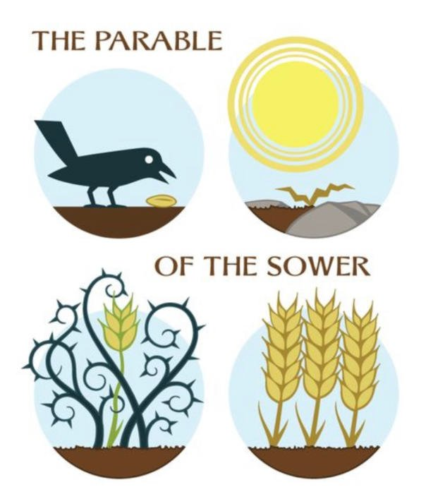Understanding the Parable of the Sower in Matthew & Luke