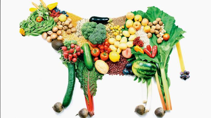 Eat vegetables. Eat beans. Eat tofu. Eat Rice. Frig off.