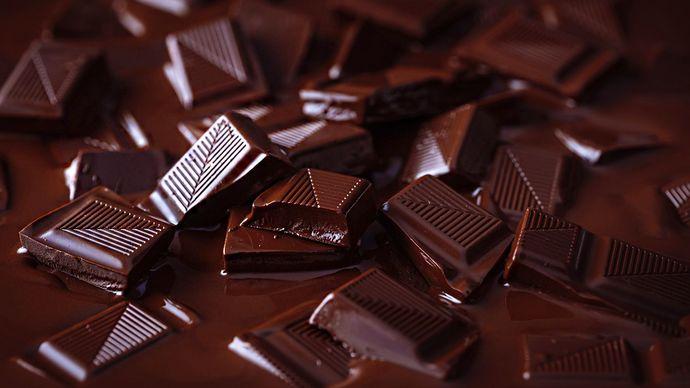 Funny Rant: Chocolate sucks