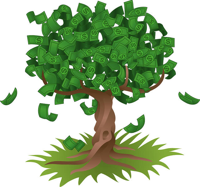 Money Doesn't Grow On Trees! 5 reasons why not everyone can afford expensive things.