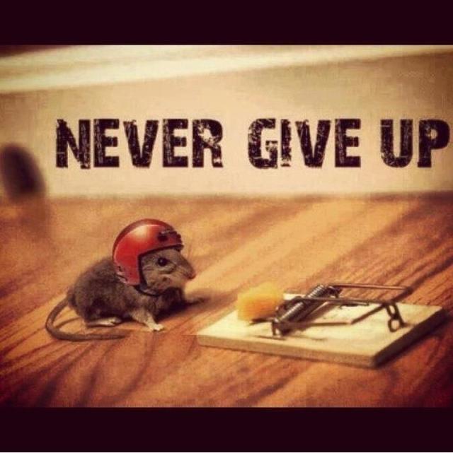 Motivational pick up !