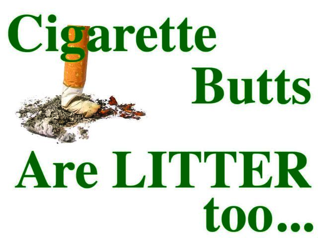 How that cigarette butt you litter is doing more environmental damage than you think!