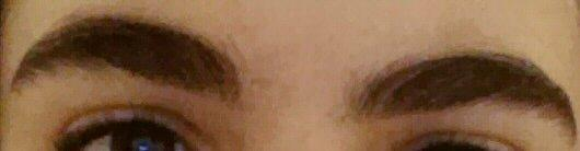 Are my eyebrows gross?