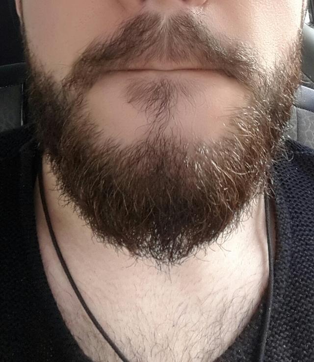 What do u think for my beard guyssss ??