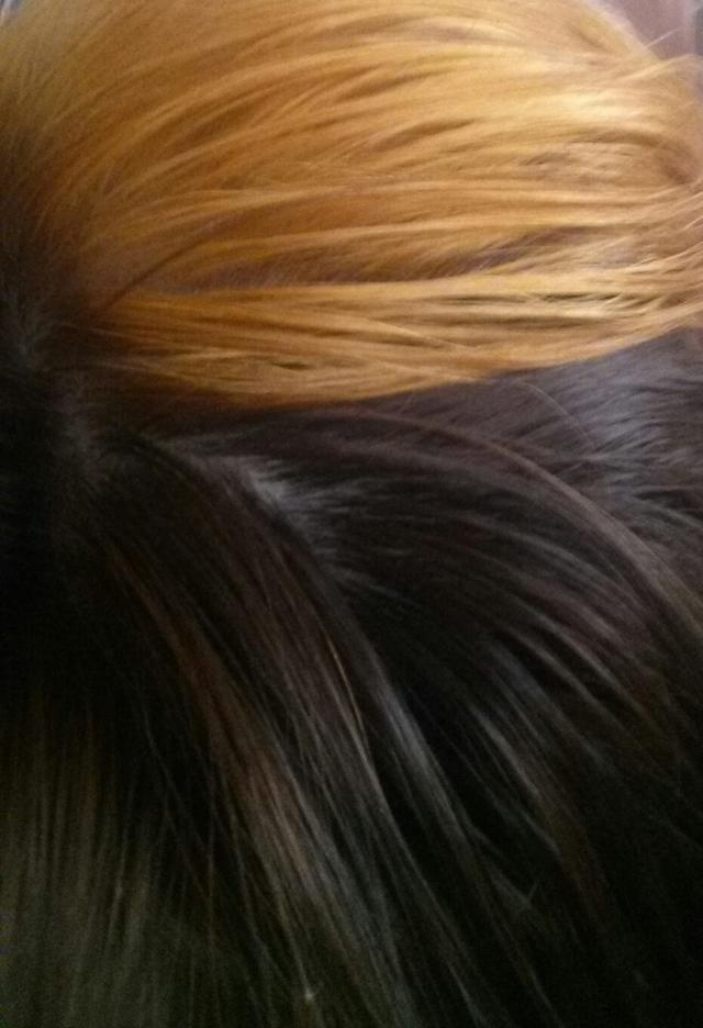 Question about bleaching hair at home?