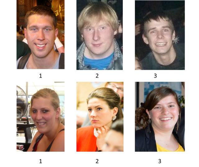 Physical attractiveness and dating choice, A test of the matching hypothesis: can you match these people?