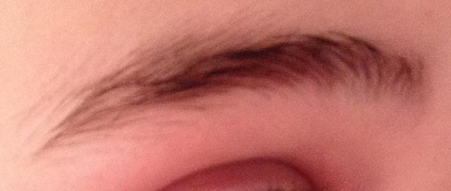 How do my eyebrows look?