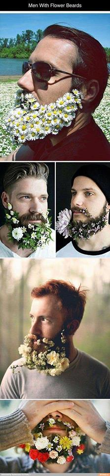What do you guys think of this idea for men's beards?