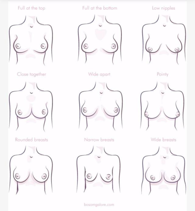 fiction-submission-boob-sizes-nipple-types-sex-picks-positions
