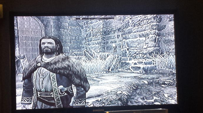 who does my Skyrim character look like?