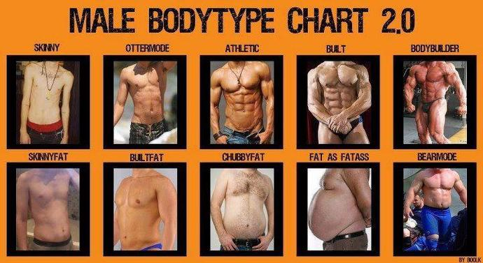 What body type would you prefer for a boyfriend?