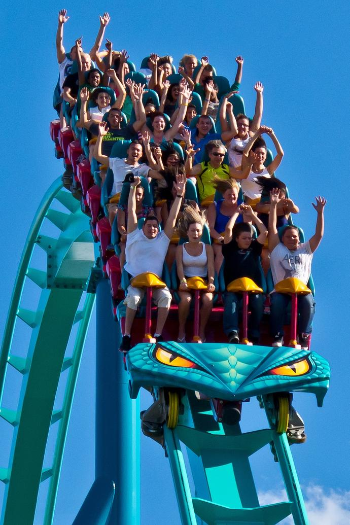 GAGers!! Do you love or hate rollercoasters?