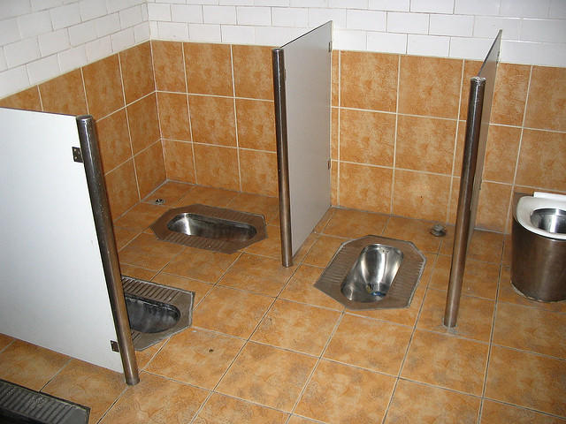 Would you accept 1 million bucks if you have to replace your flush toilet with a squat toilet?