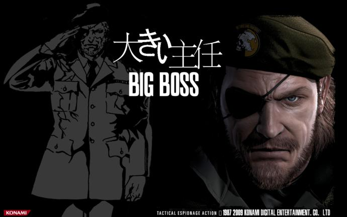 Are you a Metal Gear Solid video game fan?