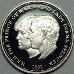 What do you think of this (Prince Charles and Lady Diana)?