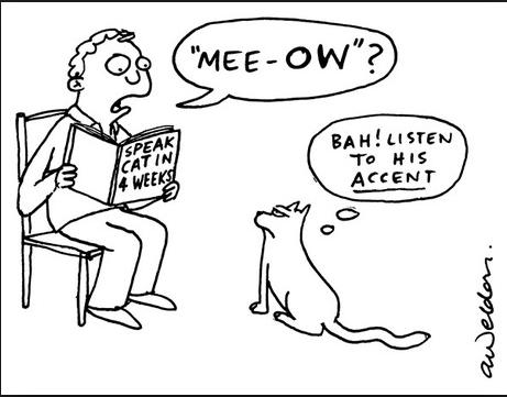 Favourite Accents?