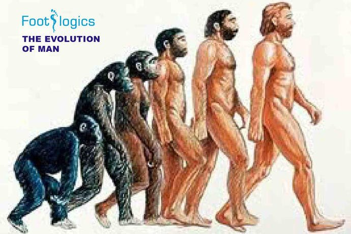 What evolutionary advantage was there for man to walk upright on two legs?