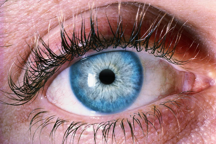 Do you find these blue with grey eyes interesting or unattractive?