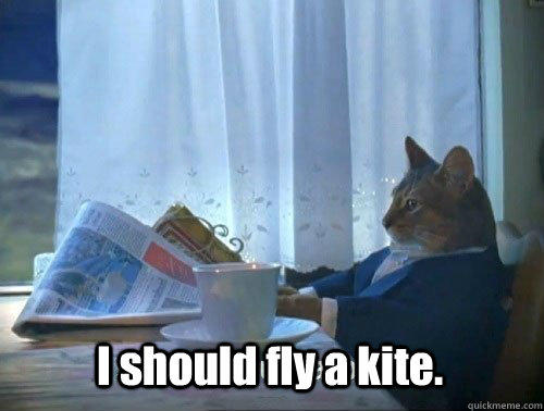 Have you ever flown a kite?