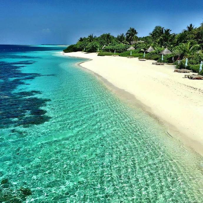 Maldives anyone  ?