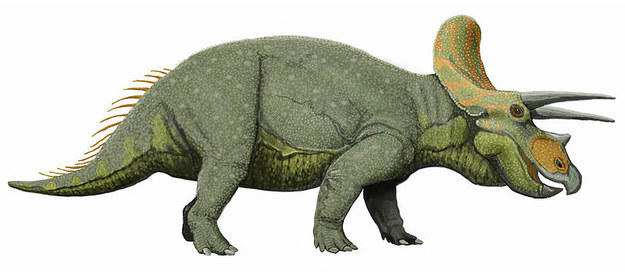 (Quiz) What dinosaur were you in a past life?