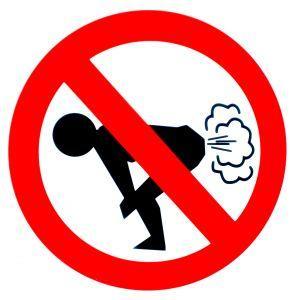 Is it true it's illegal to fart in public in Singapore?