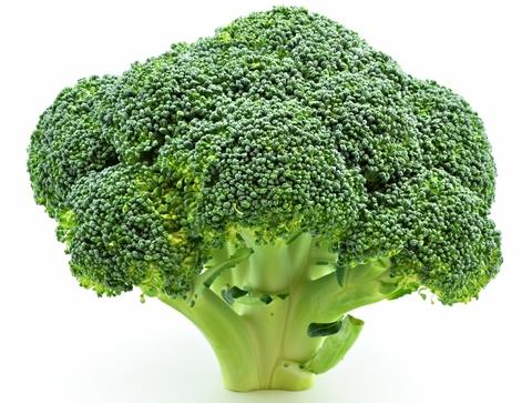 Have you noticed that broccoli looks like trees?