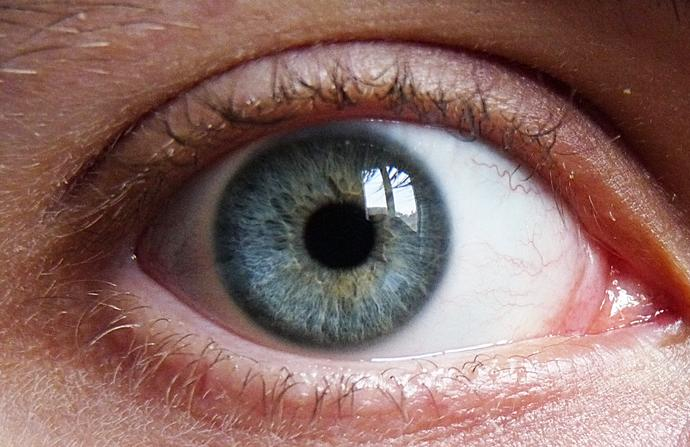 What color are my eyes (Please read full description)?