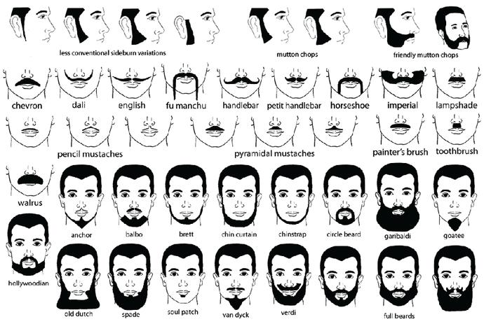 What facial hair would you like or like your boyfriend to have?