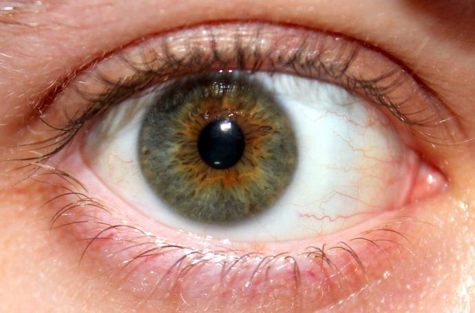 What do you think of hazel eyes?