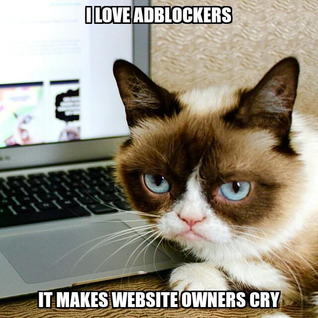 Do you use Adblockers? If yes, which ones?