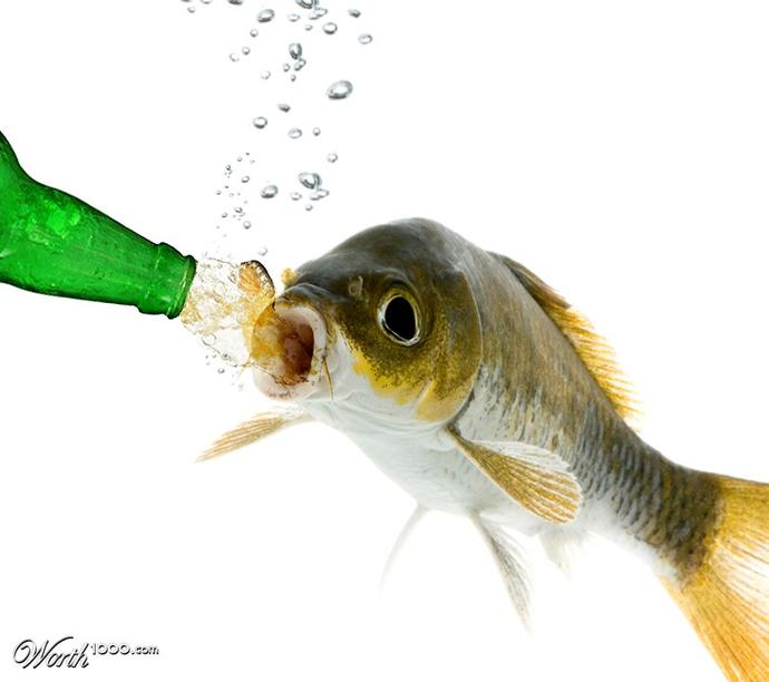 Do you think fish get thirsty?