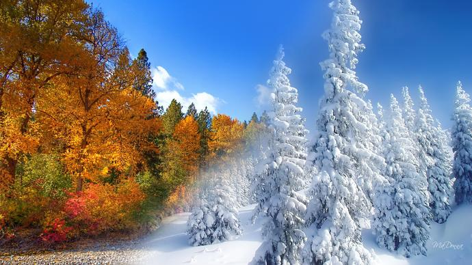 What are you looking forward to the most in Fall or Winter?