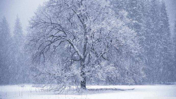 Anyone looking forward to Winter?