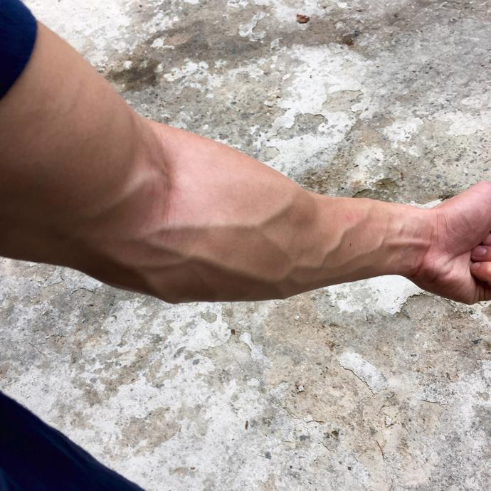 Image result for vein forearm
