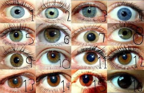 Which one can be your eye colour?