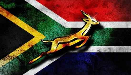 Do you support the Springboks ?