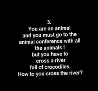 How will you cross the river?