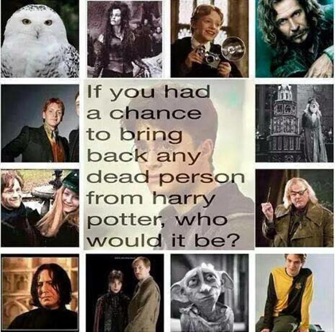 If you had to bring back one Harry Potter character, which would it be?