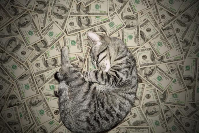 Girls, i sleep on a pile of MONEY $$$$$ every day. Would you like to date me?