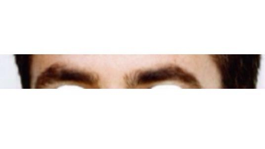 Ladies, what's the deal with guy's eyebrows? + quiz?