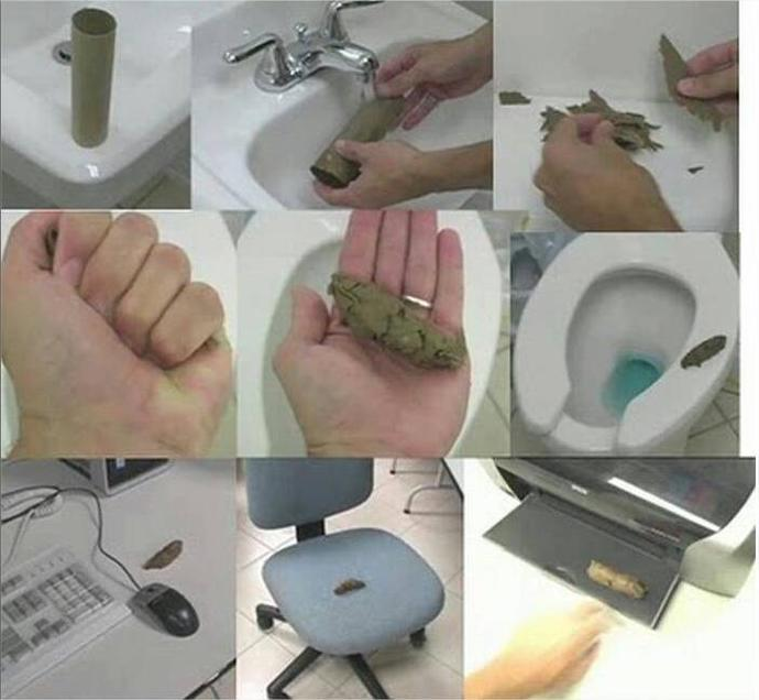 Have you ever tried to make a DIY fake poop from toilet's paper roll?
