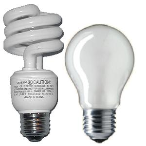 Do you have incandescent/halogen or fluorescent lights in your house?