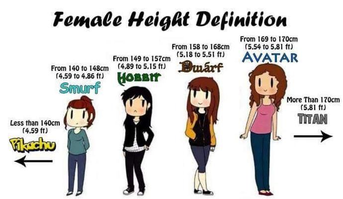 What is your Height Definition?