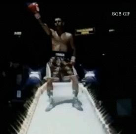 You are a boxer/professional fighter and the announcer is calling your name to the ring, what song do you walk out to?
