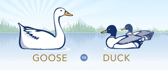 Duck vs Goose. Your preference?