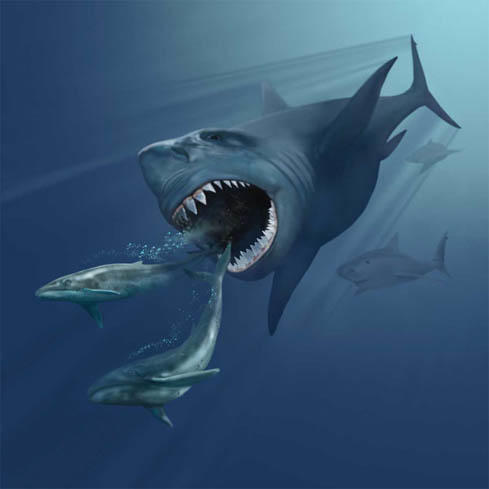 Poll: Who do you think the ultimate prehistoric sea monster was; megalodon, leviathan or predator X?